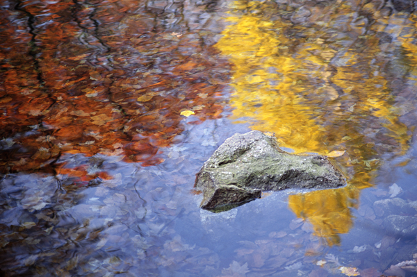 Autumn Reflections [113]