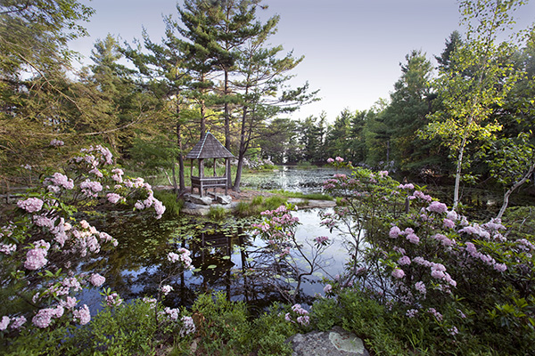 Spring, Mohonk Lily Pond [3098]